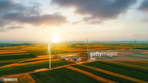 tall wind turbines in a field - serbia stock pictures, royalty-free photos & images