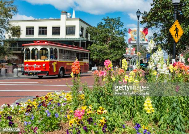 tallahassee, florida street scene - tallahassee stock pictures, royalty-free photos & images