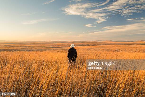 tallgrass prairie national preserve and hiker - prairie stock pictures, royalty-free photos & images