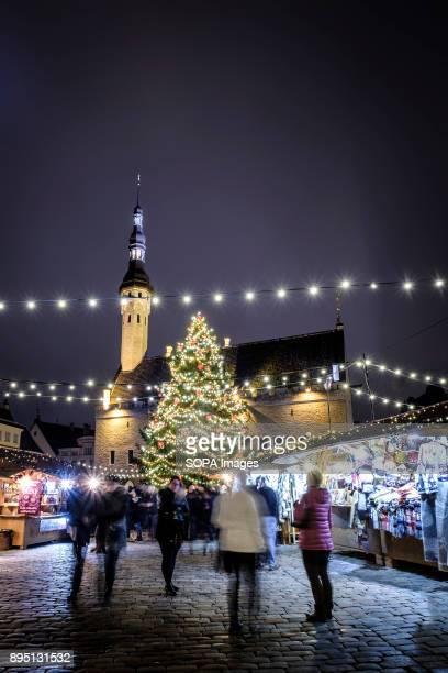 TOWN TALLINN HARJUMAA ESTONIA Tallinn Christmas market and Christmas tree at Tallinn's Town Hall Square Tallinn is the largest city in Estonia and it...