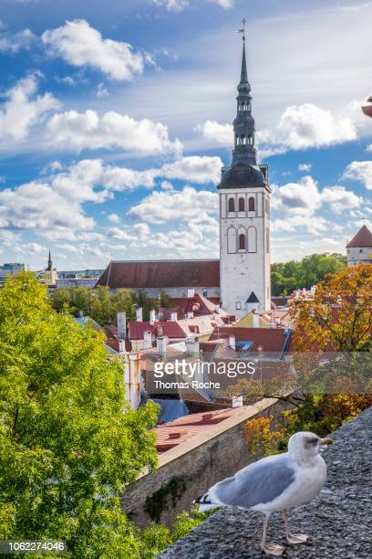 tallinn from above - tallinn stock pictures, royalty-free photos & images