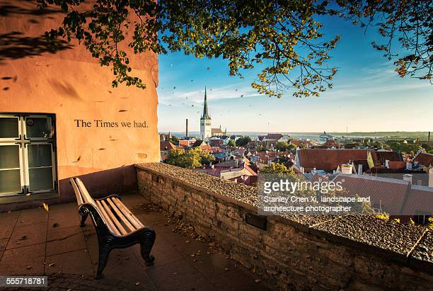 tallinn in golden - estonia stock photos and pictures