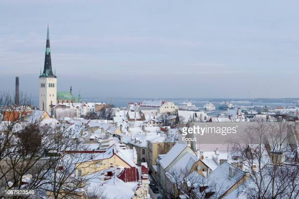 Focus/Toomas Tuul/Universal Images Group via Getty Images