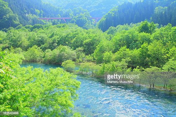Tama river, Akita Prefecture