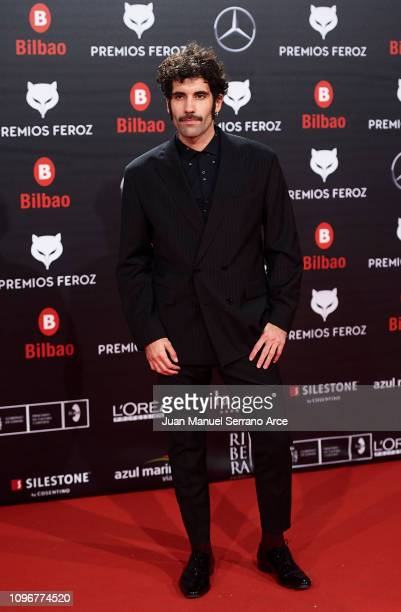 Tamar Novas on the red carpet during the Feroz Awards 2019 on January 19 2019 in Bilbao Spain