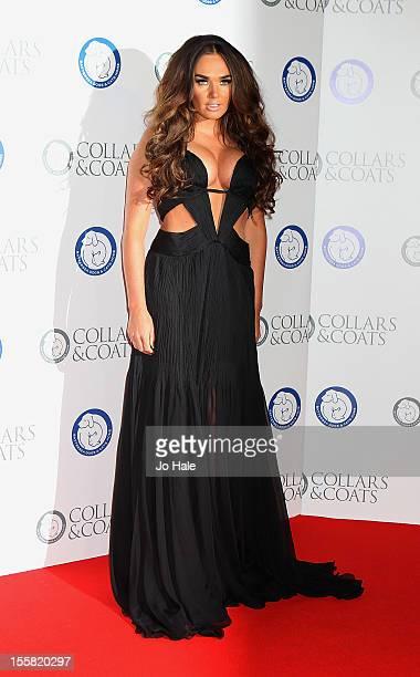 Tamara Ecclestone attends the Collars Coats Gala Ball at Battersea Evolution on November 8 2012 in London England