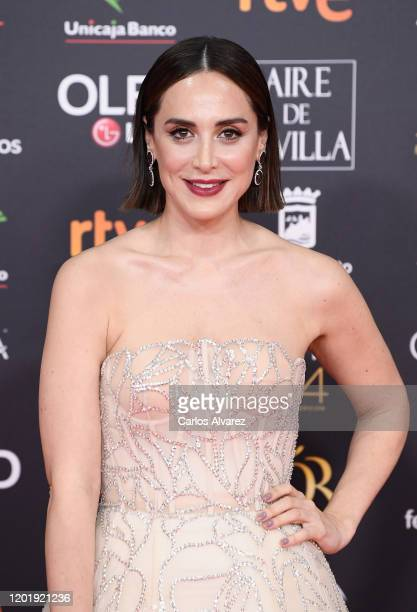 Tamara Falco attends the Goya Cinema Awards 2020 during the 34th edition of the Goya Cinema Awards at Jose Maria Martin Carpena Sports Palace on...