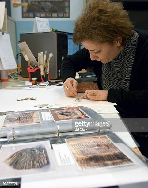 Tamara Ohanyan book conservator at the Library of Congress works to preserve a piece of book binding material at her work space in the basement of...