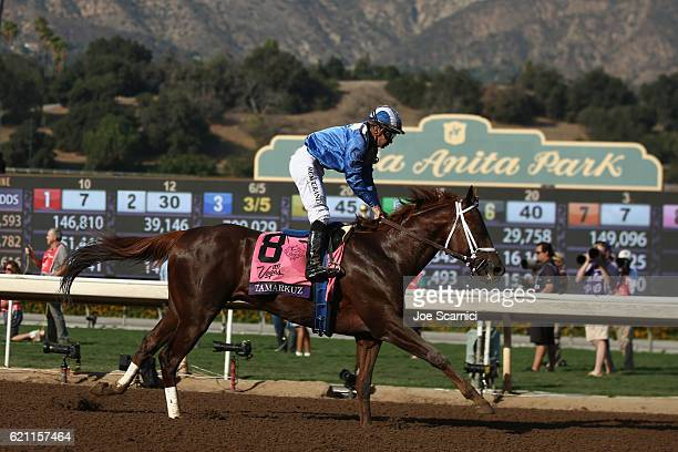 Tamarkuz ridden by Mike Smith wins the Las Vegas Breeder's Cup Dirt Mile during day one of the 2016 Breeders' Cup World Championships at Santa Anita...