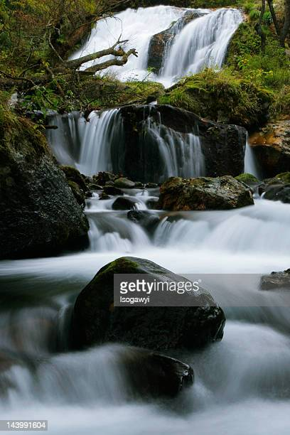 tamasudare falls - isogawyi stock pictures, royalty-free photos & images