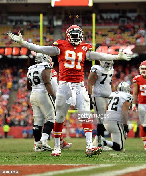 Tamba Hali of the Kansas City Chiefs celebrates sacking Derek Carr of the Oakland Raiders during the second half at Arrowhead Stadium on December 14...