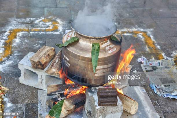 Tamil Hindus cook a traditional Pongal dish in Toronto Ontario Canada on January 14 2018 during the occasion of the Thai Pongal Festival The festival...