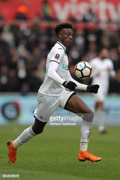 Tammy Abraham of Swansea City during The Emirates FA Cup Quarter Final match between Swansea City and Tottenham Hotspur at Liberty Stadium on March...