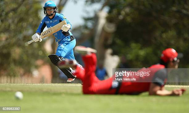 Tammy Beaumont of the Strikers bats during the Women's Big Bash League match between the Melbourne Renegades and the Adelaide Strikers at North...