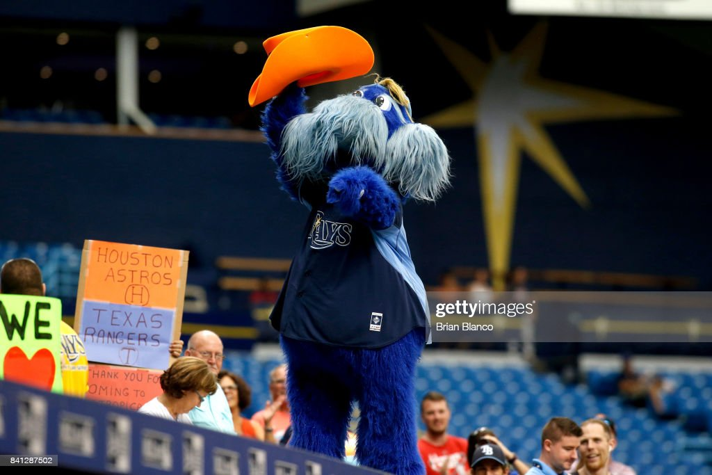 Tampa Bay Rays mascot Raymond gestures with a fan's Houston Astros hat during the seventh inning of a game between the Houston Astros and the Texas Rangers on August 31, 2017 at Tropicana Field in St. Petersburg, Florida.