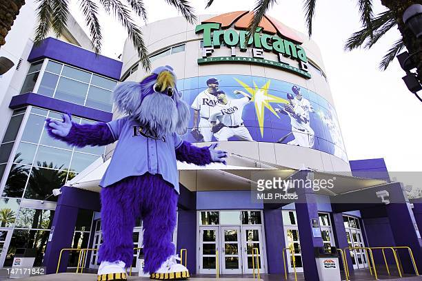 Tampa Bay Rays mascot Raymond is seen outside of Tropicana Field on April 8, 2012 in Tampa Bay, Florida.