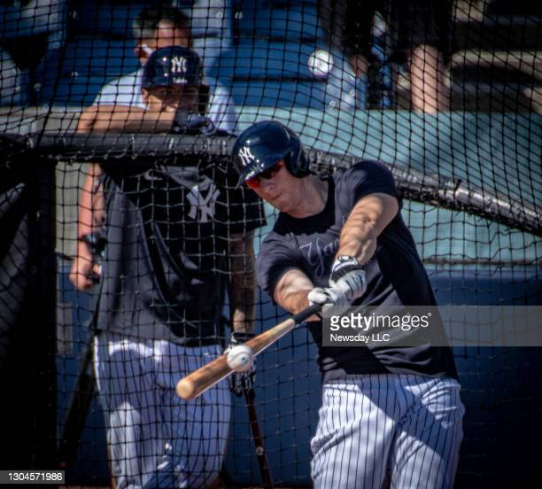 New York Yankees' infielder DJ LeMahieu taking batting practice during spring training at George Steinbrenner Field in Tampa, Florida on Feb. 27,...