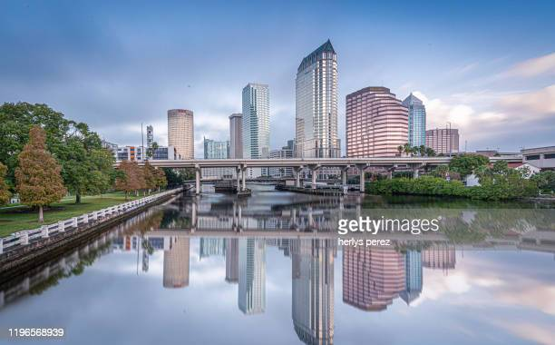 tampa - tampa stock pictures, royalty-free photos & images