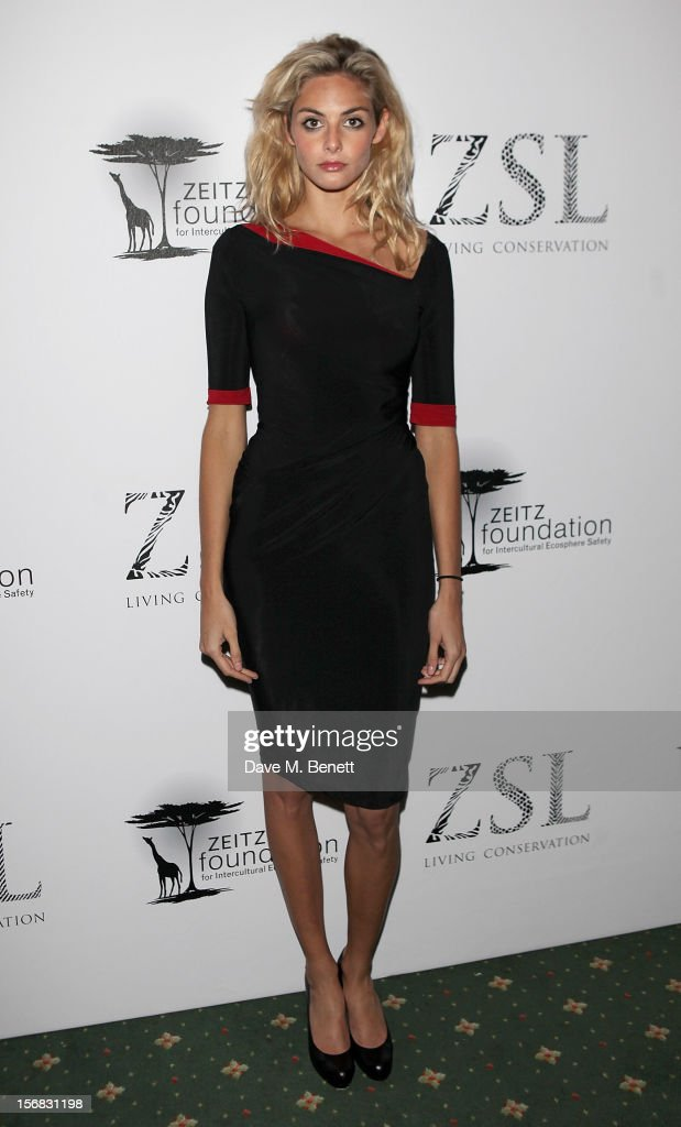 Tamsin Egerton arrives at the Zeitz Foundation and ZSL Gala at London Zoo on November 22, 2012 in London, England.