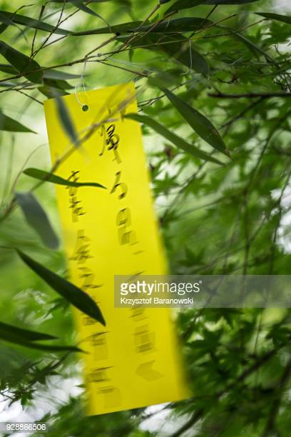 tanabata wishes - tanabata festival stock pictures, royalty-free photos & images