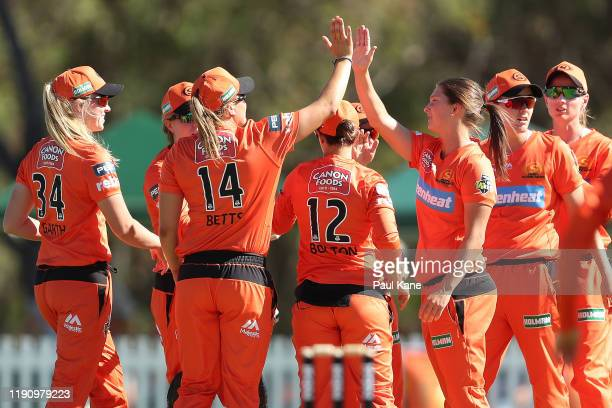 Taneale Peschel of the Scorchers celebrates the wicket of Nicola Carey of the Hurricanes during the Women's Big Bash League match between the Perth...