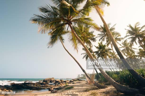 tangalle beach hammocks - ゴール市 ストックフォトと画像