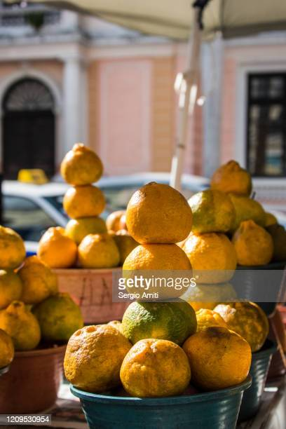 tangerines on sale at market - yucatan stock pictures, royalty-free photos & images