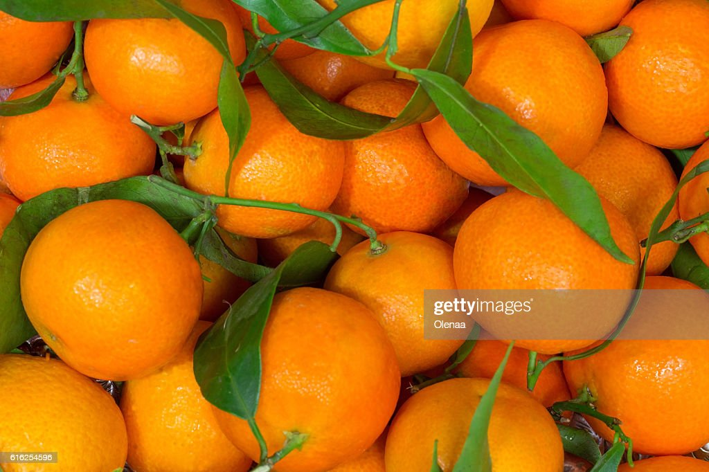 Tangerines with green leaves closeup : Foto de stock