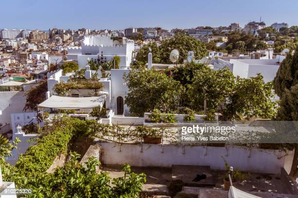 tangiers's medina - tetouan stock photos and pictures
