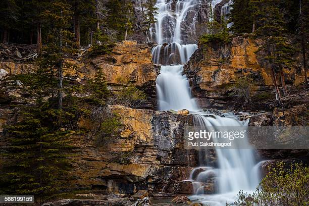 Tango falls on Icefield Parkway