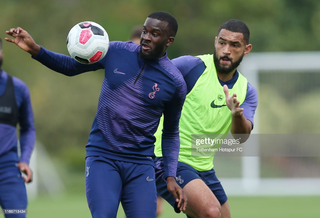 Tottenham Hotspur Pre-Season Training Session : News Photo
