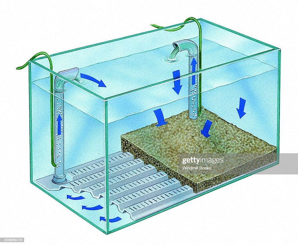 undergravel filter for aquarium 1000 aquarium ideas. Black Bedroom Furniture Sets. Home Design Ideas