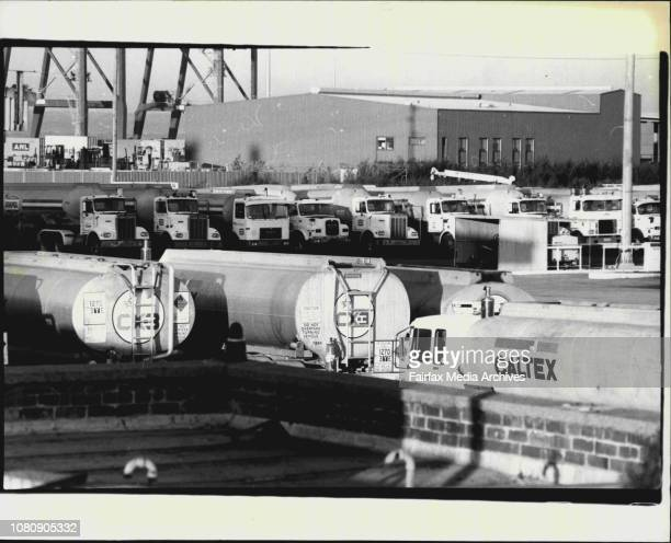 Tankers' Some of the 100 Idle tankers at the CaltexAmpol terminal at Banksmeadow today July 27 1981