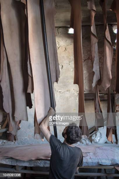 A tanner seen hanging leathers to dry during the leather processing at the leather tannery Tampakaria is an area in Chania where there are three...
