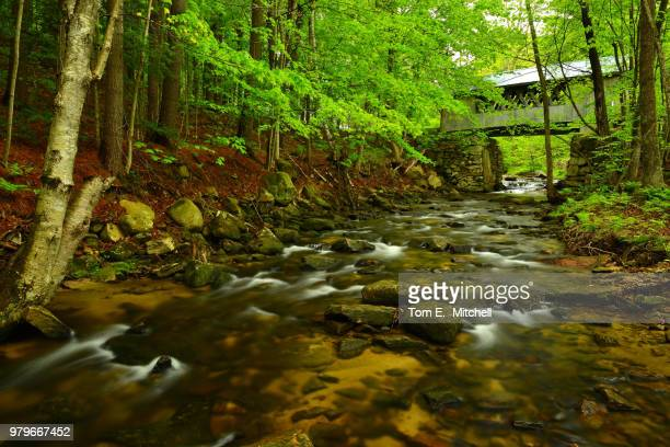 tannery hill covered bridge - brook mitchell stock pictures, royalty-free photos & images