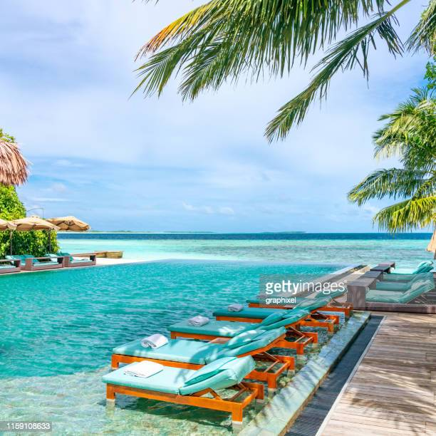 tanning beds beside swimming pool in tropical resort in maldives - tourist resort stock pictures, royalty-free photos & images