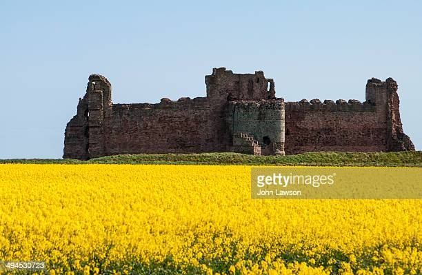 Tantallon Castle is a semi-ruined mid-14th-century fortress, located 5 kilometres east of North Berwick, in East Lothian, Scotland. It sits atop a...