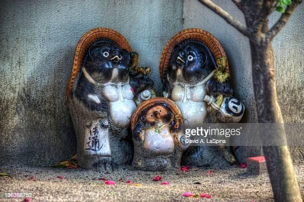 Tanuki family