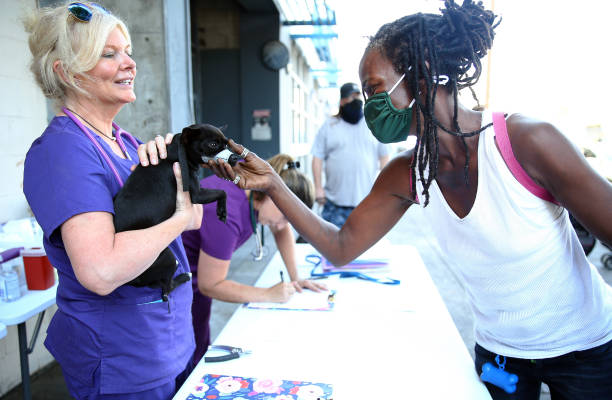 CA: National Nonprofit Group Provides Veterinary Care To Pets Within L.A.'s Skid Row Community