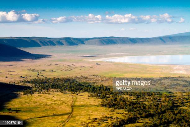 Tanzania Africa A place where nature and big animals live together in perfect armony Tanzania has considerable wildlife habitat including much of the...