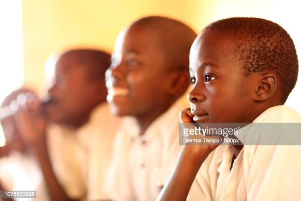 tanzania, boys in primary school - dietmar temps stock photos and pictures