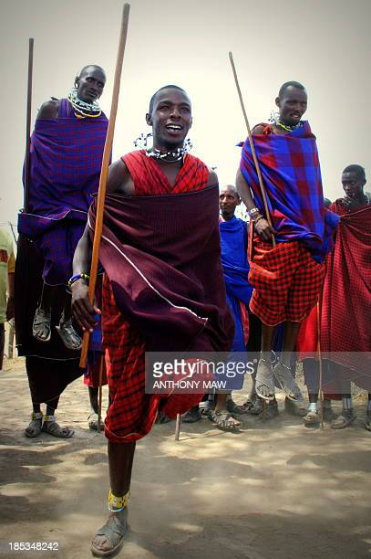 Tanzania Serengeti For a quotdonationquot of 15000 Tanzania Shilling to their village the Masai warriorhunters dressed in traditional blankets will...