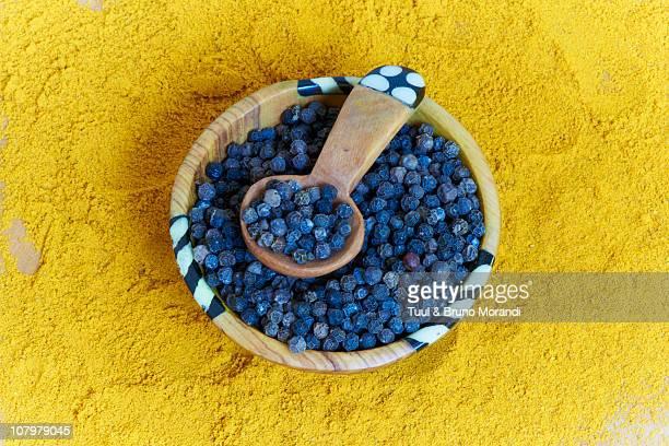 tanzania, zanzibar, spice garden, black peper - zanzibar stock pictures, royalty-free photos & images