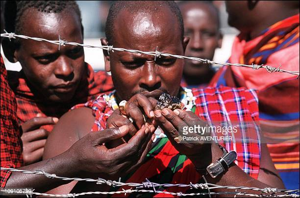 Tanzanite The Blue Diamond Of The Masai On January 6Th Tanzania A Masai Purchaser Examines The Stones He Has Just Purchased And Will Sell Just...