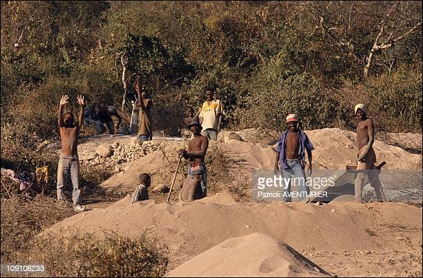 Tanzanite The Blue Diamond Of The Masai On January 6Th Tanzania Miners Working In The Clandestine Shafts Along The Main Road Through Mererani