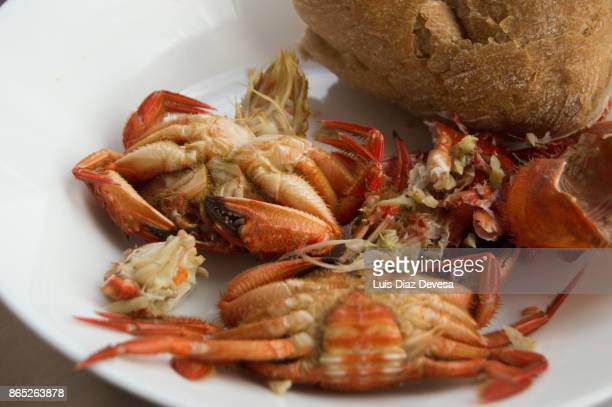 tapa of crayfish