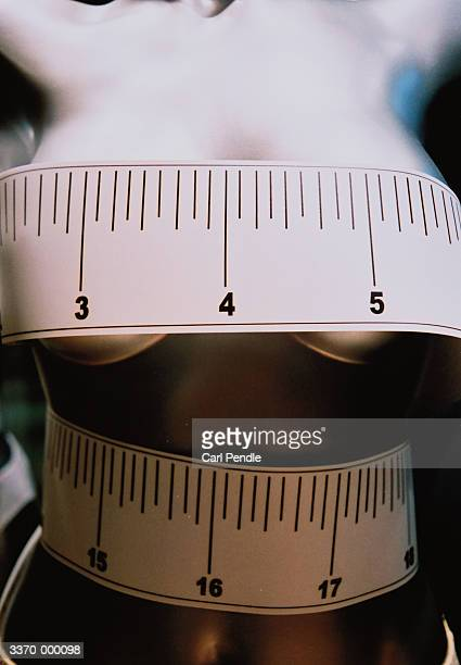 tape measure around mannequin - grote borsten stockfoto's en -beelden