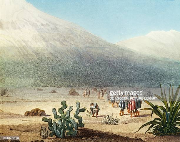 Tapia plain at the foot of Chimborazo volcano Ecuador engraving from Views of the cordilleras and monuments of the indigenous peoples of the Americas...