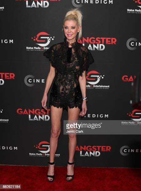 Tara Reid attends the Premiere Of Cinedigm's 'Gangster Land' at the Egyptian Theatre on November 29 2017 in Hollywood California