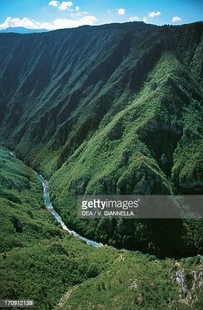 Tara River canyon Durmitor National Park Montenegro